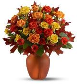Amber Roses by Davis Floral Comany, your Brownwood, Texas (TX) Florist