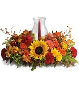 Delight-fall Centerpiece by Davis Floral Comany, your Brownwood, Texas (TX) Florist