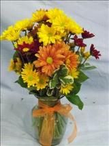 Country Chrysanthemums by Davis Floral Comany, your Brownwood, Texas (TX) Florist