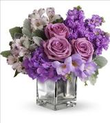 Sweet as Sugar by Teleflora by Davis Floral Comany, your Brownwood, Texas (TX) Florist