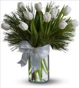 Tulips and Pine by Davis Floral Comany, your Brownwood, Texas (TX) Florist