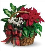Holiday Homecoming Basket by Davis Floral Comany, your Brownwood, Texas (TX) Florist