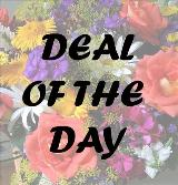 Deal of the Day by Davis Floral Comany, your Brownwood, Texas (TX) Florist