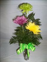 Spring Thanks! by Davis Floral Comany, your Brownwood, Texas (TX) Florist