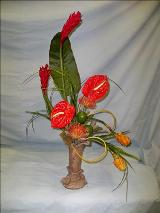 Tropical Delite by Davis Floral Comany, your Brownwood, Texas (TX) Florist