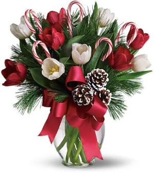 By Golly, It's Jolly by Davis Floral Comany, your Brownwood, Texas (TX) Florist