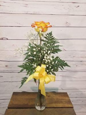 1 Rose in Vase, Circus by Davis Floral Comany, your Brownwood, Texas (TX) Florist