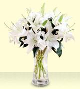 10-Stem White Oriental Lilies by Davis Floral Comany, your Brownwood, Texas (TX) Florist