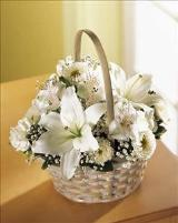 Divinity™ Basket by Davis Floral Comany, your Brownwood, Texas (TX) Florist