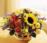 Autumn Medley™ Basket by Davis Floral Comany, your Brownwood, Texas (TX) Florist