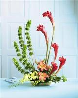 The FTD® Touch of Tropics™ Arrangement by Davis Floral Comany, your Brownwood, Texas (TX) Florist