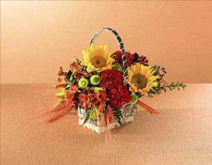 Autumn Harvest™ Basket by Davis Floral Comany, your Brownwood, Texas (TX) Florist