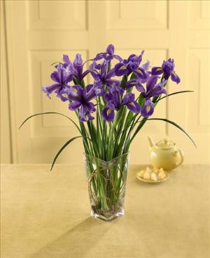 Blooming Iris Bouquet by Davis Floral Comany, your Brownwood, Texas (TX) Florist