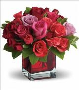 Madly in Love by Teleflora by Davis Floral Comany, your Brownwood, Texas (TX) Florist