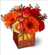 Sunrise Sunset by Davis Floral Comany, your Brownwood, Texas (TX) Florist