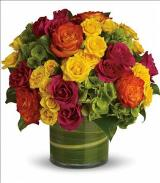 Blossoms in Vogue by Davis Floral Comany, your Brownwood, Texas (TX) Florist