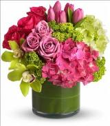 New Sensations by Davis Floral Comany, your Brownwood, Texas (TX) Florist
