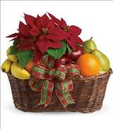 Fruit and Poinsettia Basket by Davis Floral Comany, your Brownwood, Texas (TX) Florist
