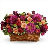 Burst of Beauty Basket by Davis Floral Comany, your Brownwood, Texas (TX) Florist