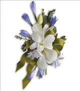 Blue and White Elegance Corsage by Davis Floral Comany, your Brownwood, Texas (TX) Florist