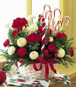 Candy Cane Basket by Davis Floral Comany, your Brownwood, Texas (TX) Florist