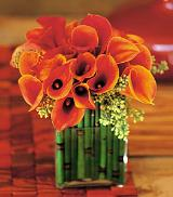 Bronze Callas by Davis Floral Comany, your Brownwood, Texas (TX) Florist