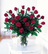 Two Dozen Red Roses by Davis Floral Comany, your Brownwood, Texas (TX) Florist