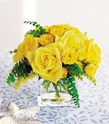 Yellow Roses in a Cube by Davis Floral Comany, your Brownwood, Texas (TX) Florist