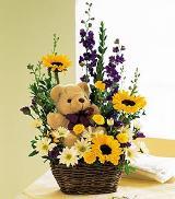Flowers with a Plush Bear by Davis Floral Comany, your Brownwood, Texas (TX) Florist
