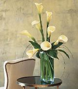 White Callas by Davis Floral Comany, your Brownwood, Texas (TX) Florist