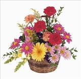 Low Wicker Basket by Davis Floral Comany, your Brownwood, Texas (TX) Florist
