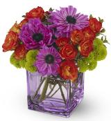Brilliant Blossoms by Davis Floral Comany, your Brownwood, Texas (TX) Florist