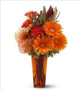 Camp Fire by Davis Floral Comany, your Brownwood, Texas (TX) Florist