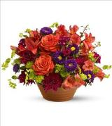 Autumn Celebration by Davis Floral Comany, your Brownwood, Texas (TX) Florist