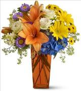 Bright Wishes by Davis Floral Comany, your Brownwood, Texas (TX) Florist