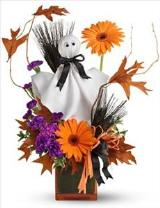 Telefloras Ghostly Greetings by Davis Floral Comany, your Brownwood, Texas (TX) Florist