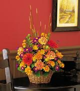 Cattails & Mums by Davis Floral Comany, your Brownwood, Texas (TX) Florist