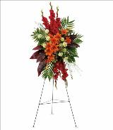 A New Sunrise Spray by Davis Floral Comany, your Brownwood, Texas (TX) Florist