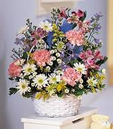 Baby Pastels in White Basket by Davis Floral Comany, your Brownwood, Texas (TX) Florist