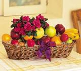 Fruit with Plant by Davis Floral Comany, your Brownwood, Texas (TX) Florist